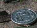 Mycena corynephora